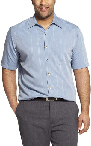 5. Van Heusen Men's Big and Tall Button Down Stripe Shirt - Preferred
