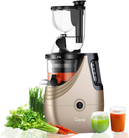 9. Caynel Cold Press Slow Masticating Juicer (Champagne)