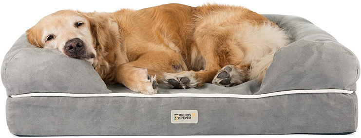 6. Friends Forever Orthopedic Dog Bed Lounge -Preferred