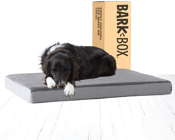 1. Barkbox Memory Foam Platform Dog Bed