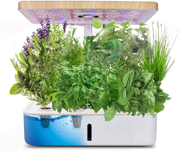 10. Morinome Indoor Hydroponics Growing System