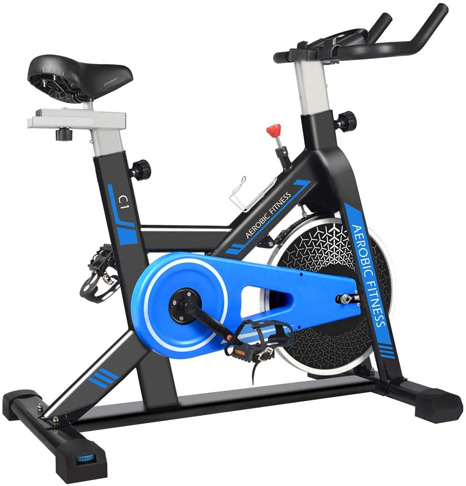 8. cycool Indoor Exercise Bike with Phone Stand